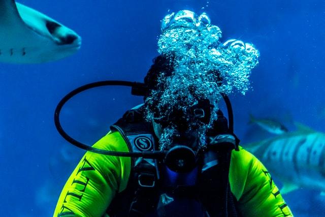 Rolex Dive Watch Repair in New York City